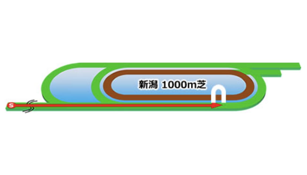 【新潟】芝1000mコースイメージ