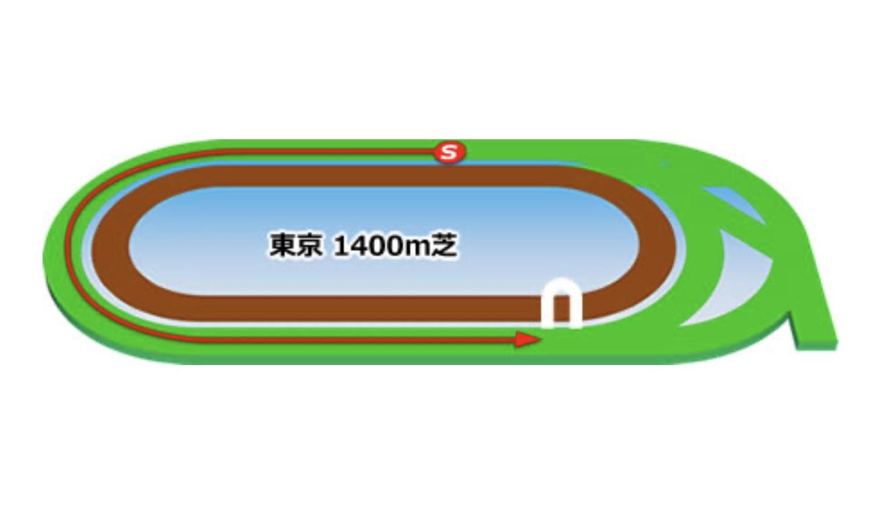 【東京】芝1400mコースイメージ