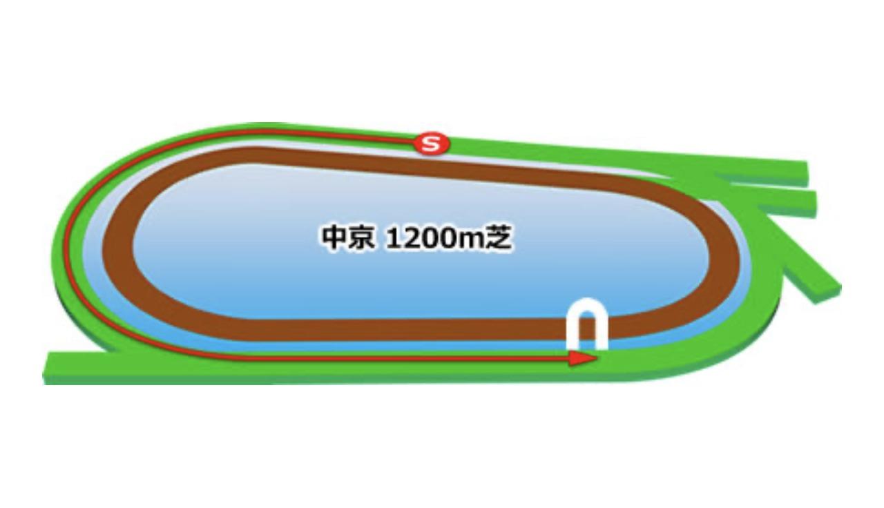 【中京】芝1200mのコースイメージ