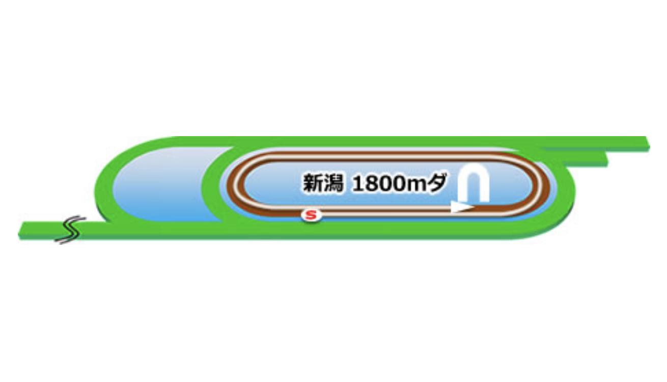 【新潟】ダート1800mコースイメージ
