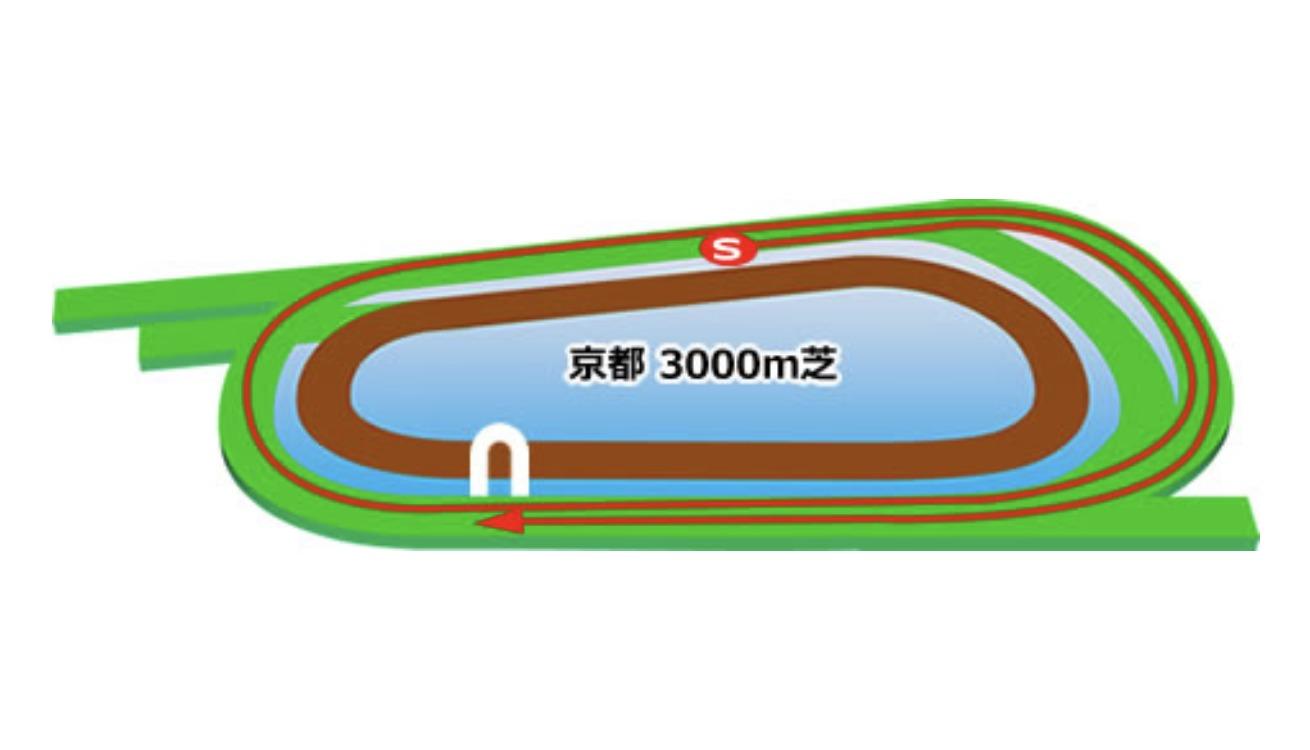 【京都】芝3000mコースイメージ
