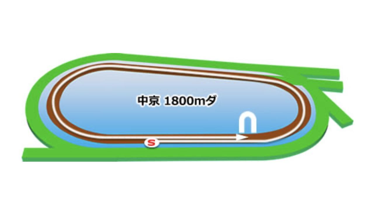【中京】ダート1800mコースイメージ