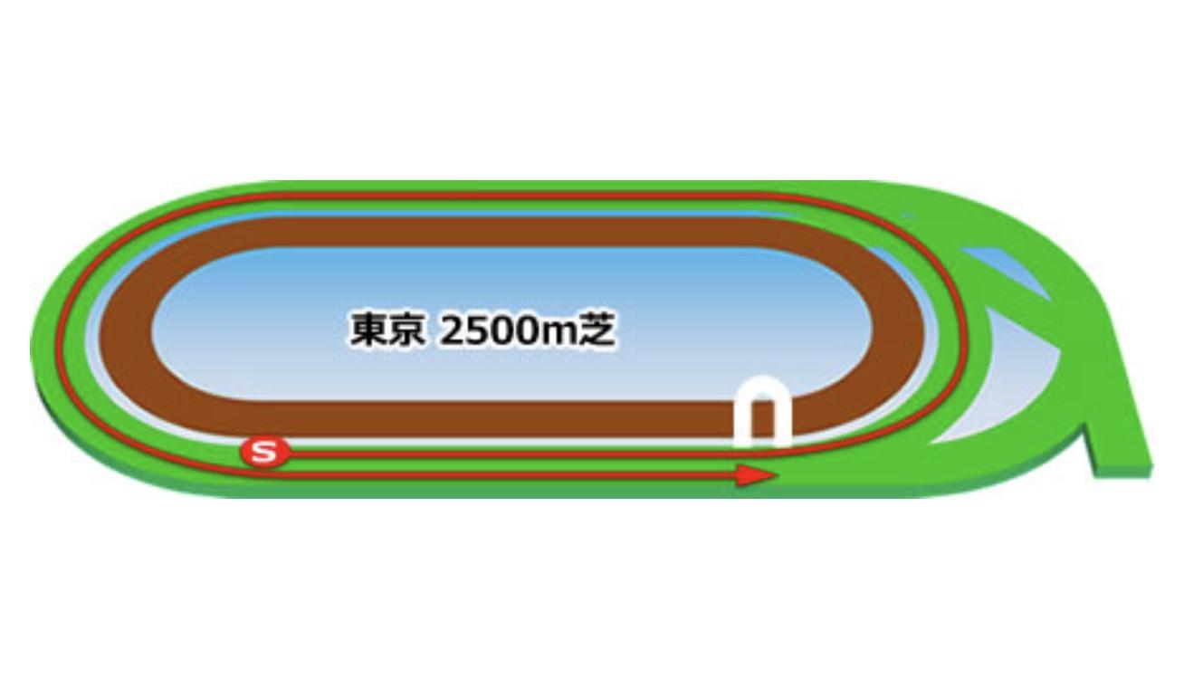 【東京】芝2500mコースイメージ