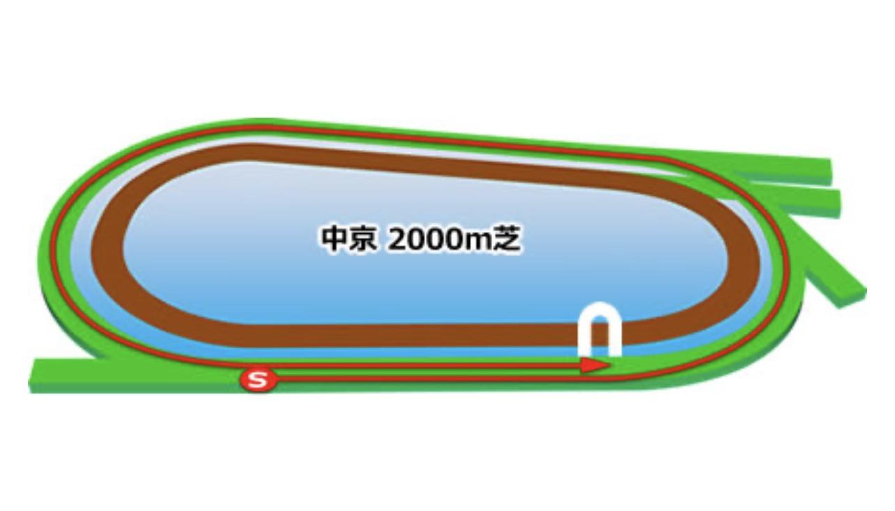 【中京】芝2000コースイメージ