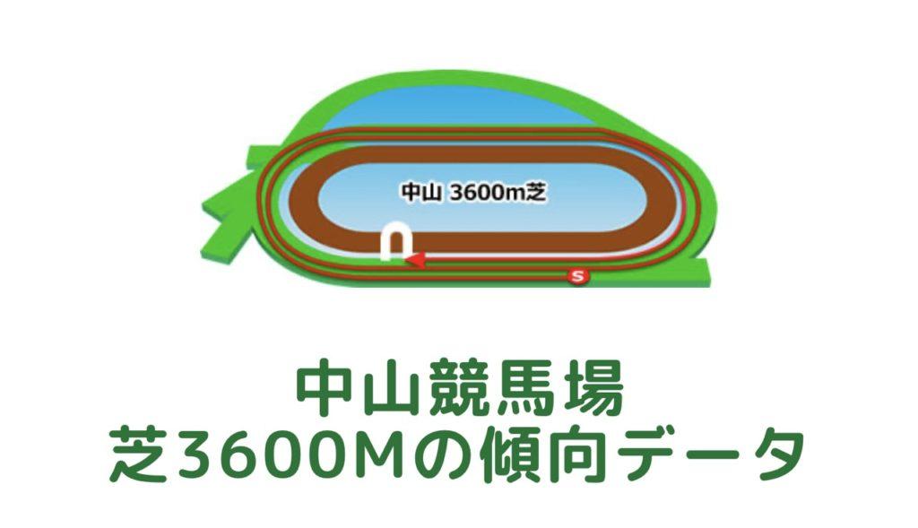 中山競馬場 芝3600mの傾向データ(血統・枠・騎手・タイム・人気・脚質)