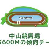 中山競馬場|芝3600mの傾向データ(血統・枠・騎手・タイム・人気・脚質)