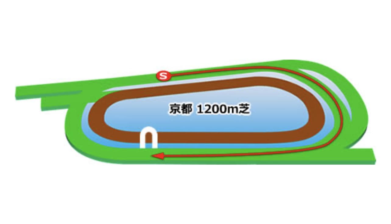 【京都】芝1200mコースイメージ