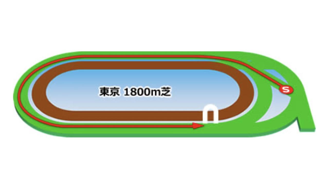 【東京】芝1800mコースイメージ