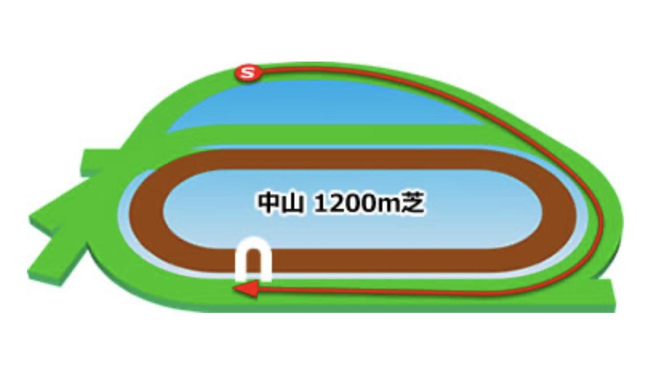 【中山】芝1200mコースイメージ