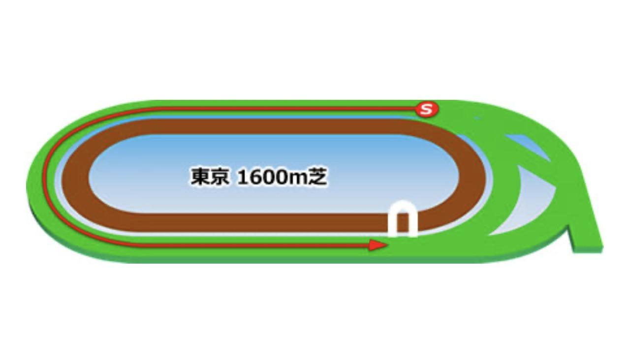 【東京】芝1600mのコースイメージ