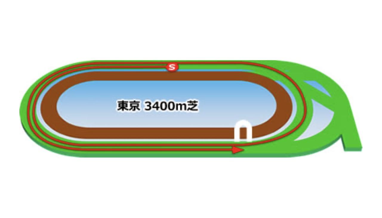 【東京】芝3400mコースイメージ