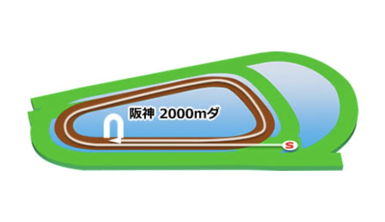【阪神】ダート2000mコースイメージ