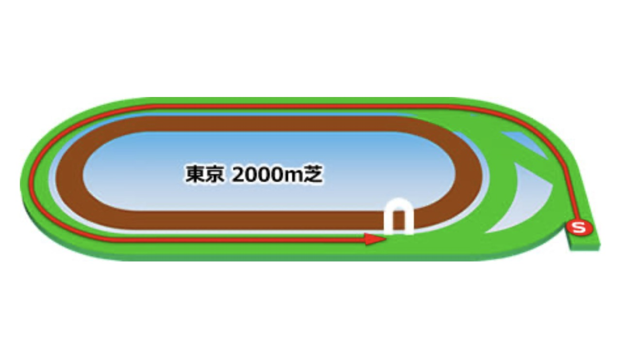 【東京】芝2000mコースイメージ