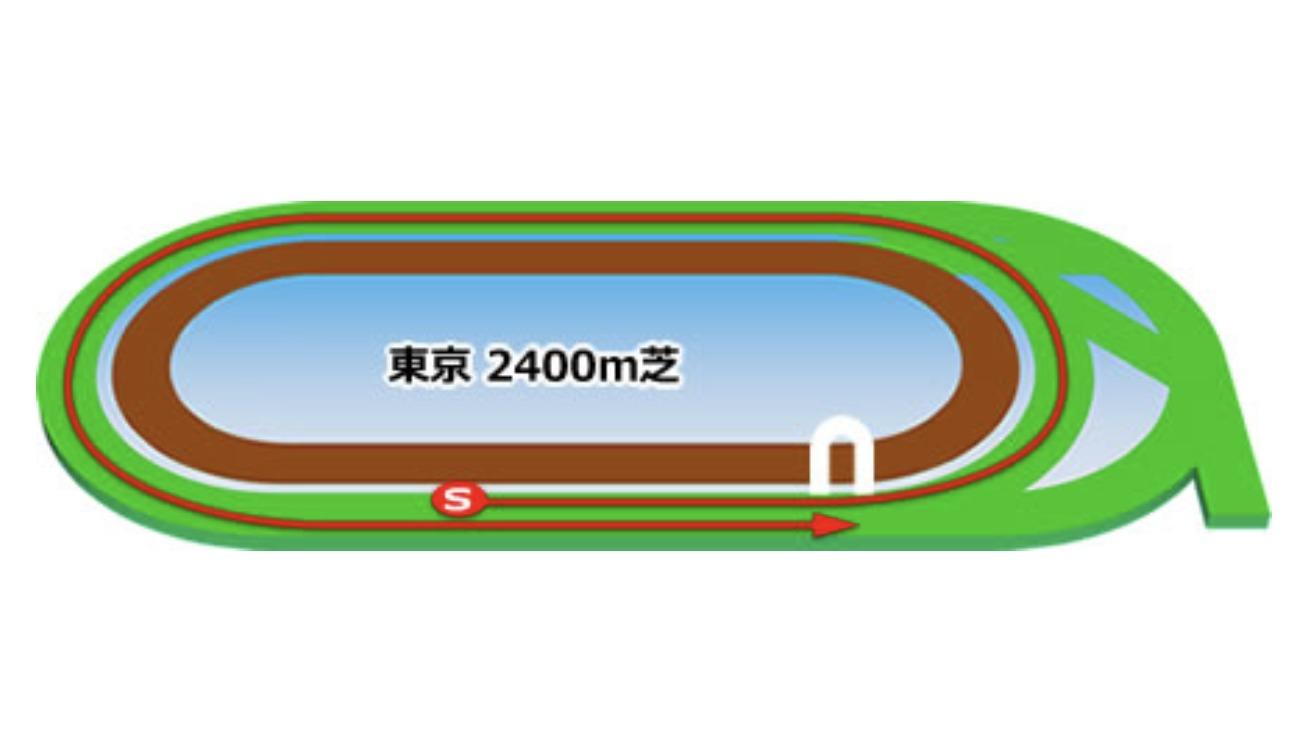 【東京】芝2400mコースイメージ