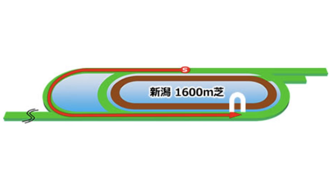 【新潟】芝1600mコースイメージ