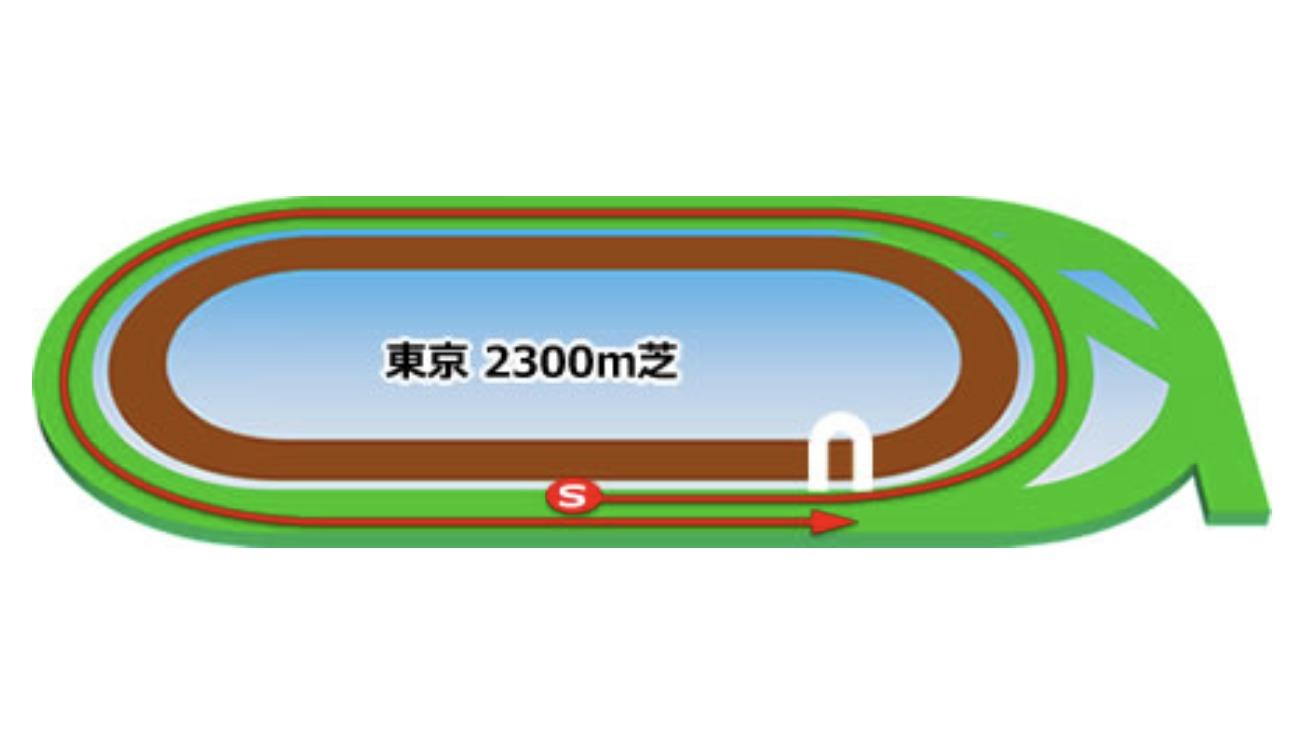 【東京】芝2300mコースイメージ