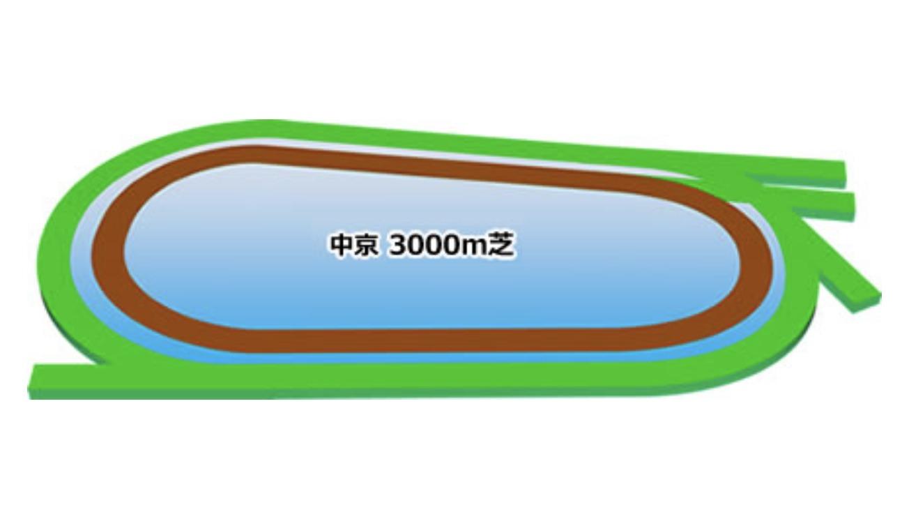 【中京】芝3000mコースイメージ