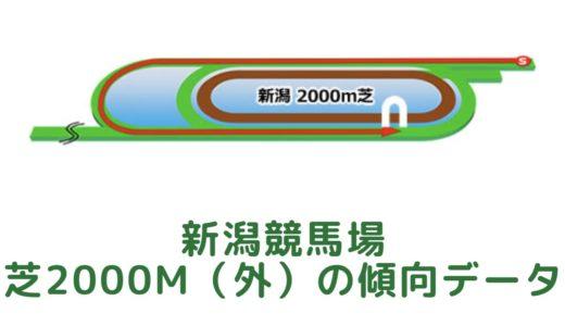 新潟芝2000m(外回り)の傾向データと特徴[2021年版]