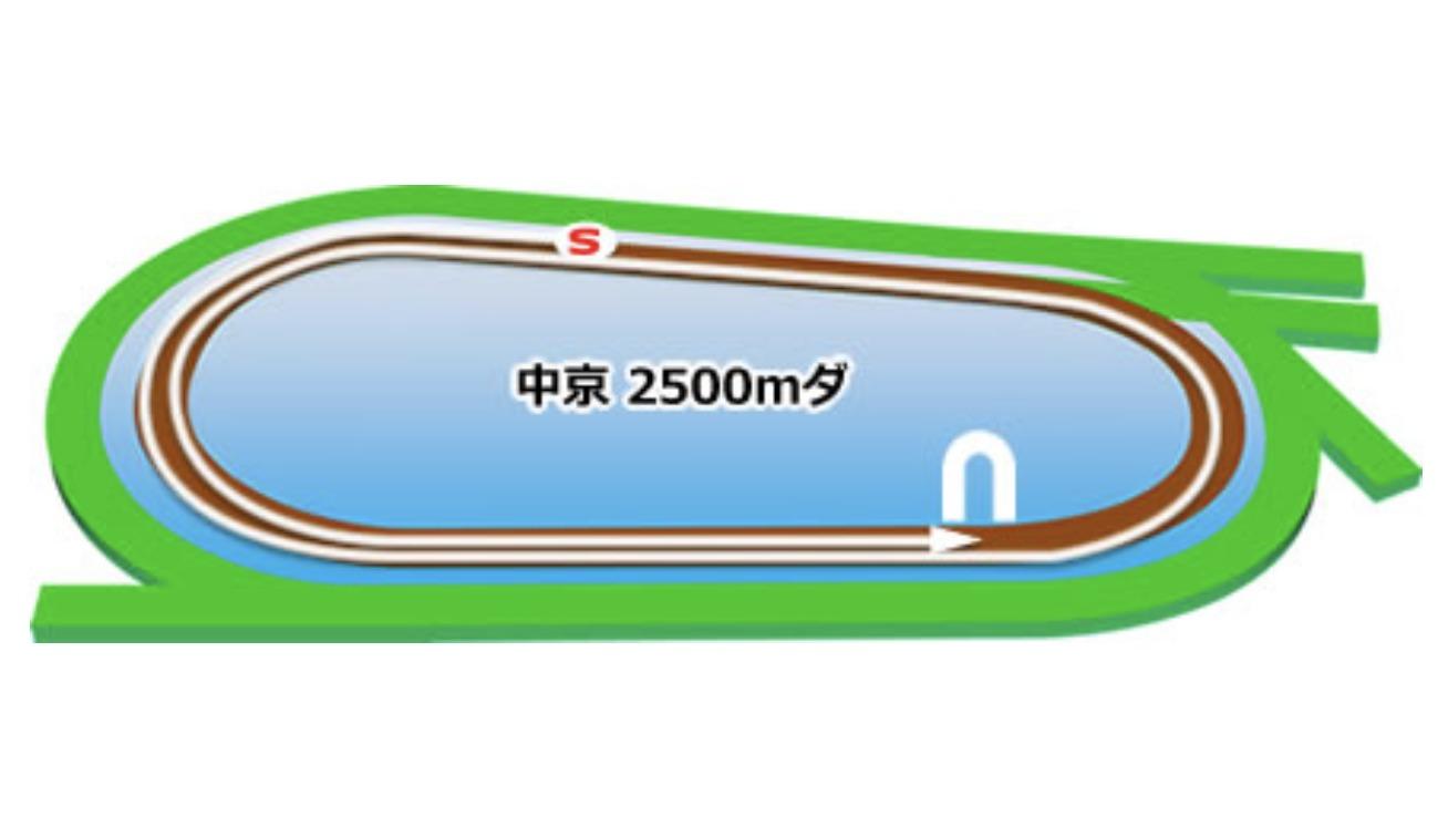 【中京】ダート2500mコースイメージ