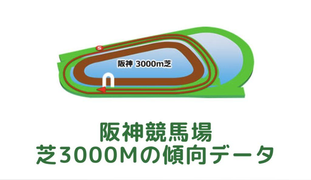 阪神競馬場|芝3000mの傾向データ(血統・枠・騎手・タイム・人気・脚質)