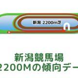 新潟競馬場|芝2200mの傾向データ(血統・枠・騎手・タイム・人気・脚質)