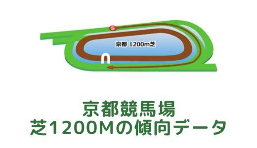 京都芝1200mの傾向データと特徴[2021年版]