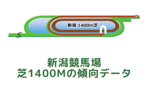 新潟芝1400mの傾向データと特徴[2021年版]