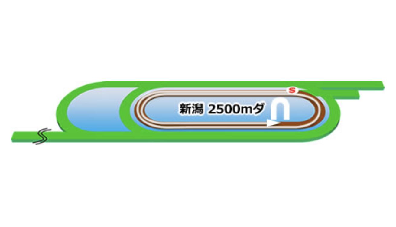 【新潟】ダート2500mコースイメージ