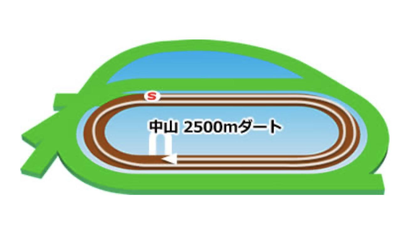 【中山】ダート2500mコースイメージ
