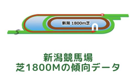 新潟芝1800mの傾向データと特徴[2021年版]