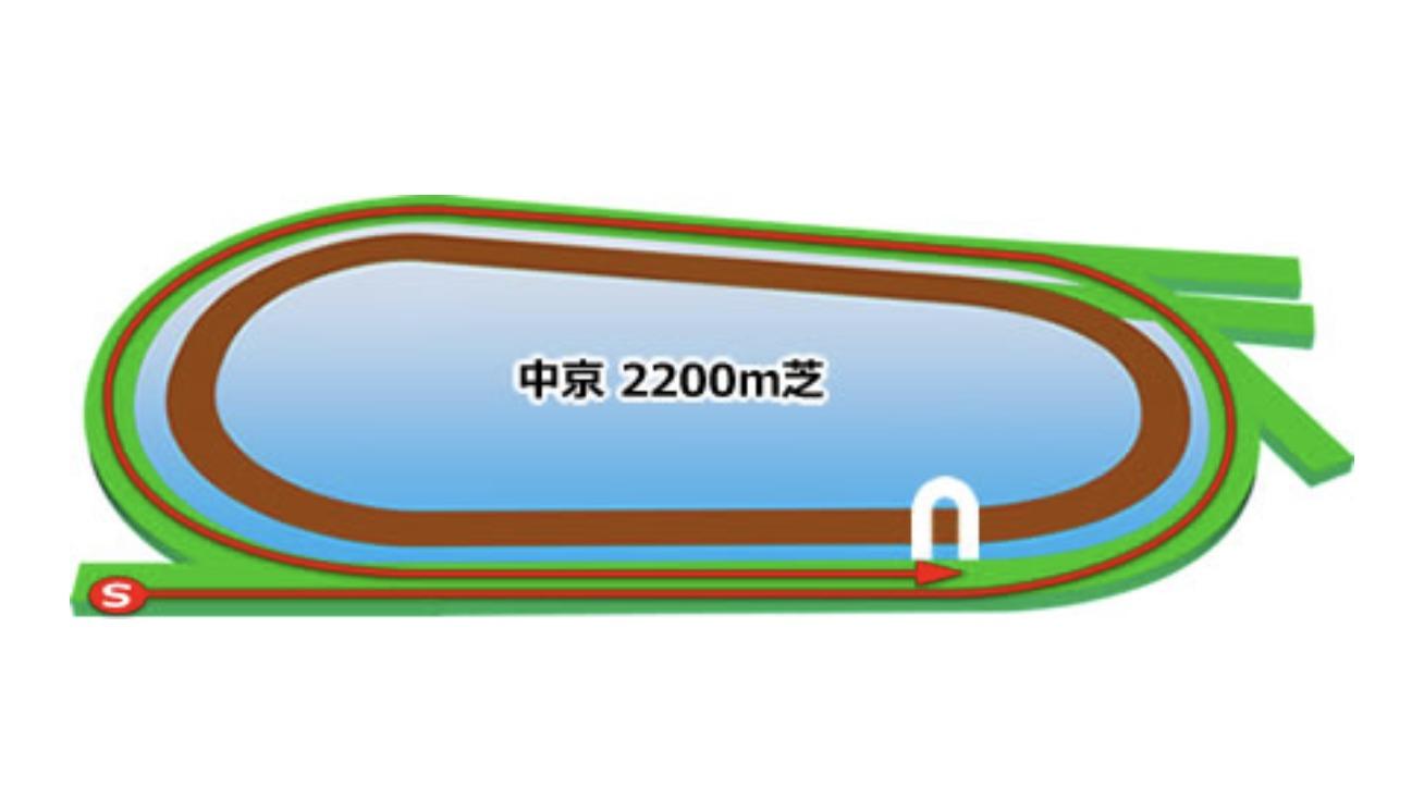 【中京】芝2200mコースイメージ