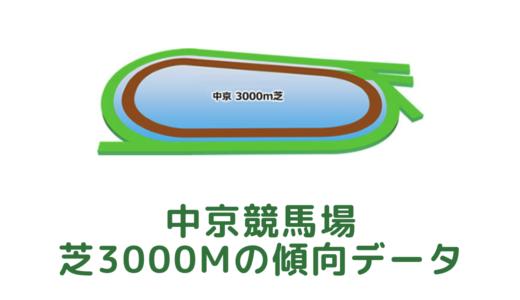 中京芝3000mの傾向データと特徴[2021年版]