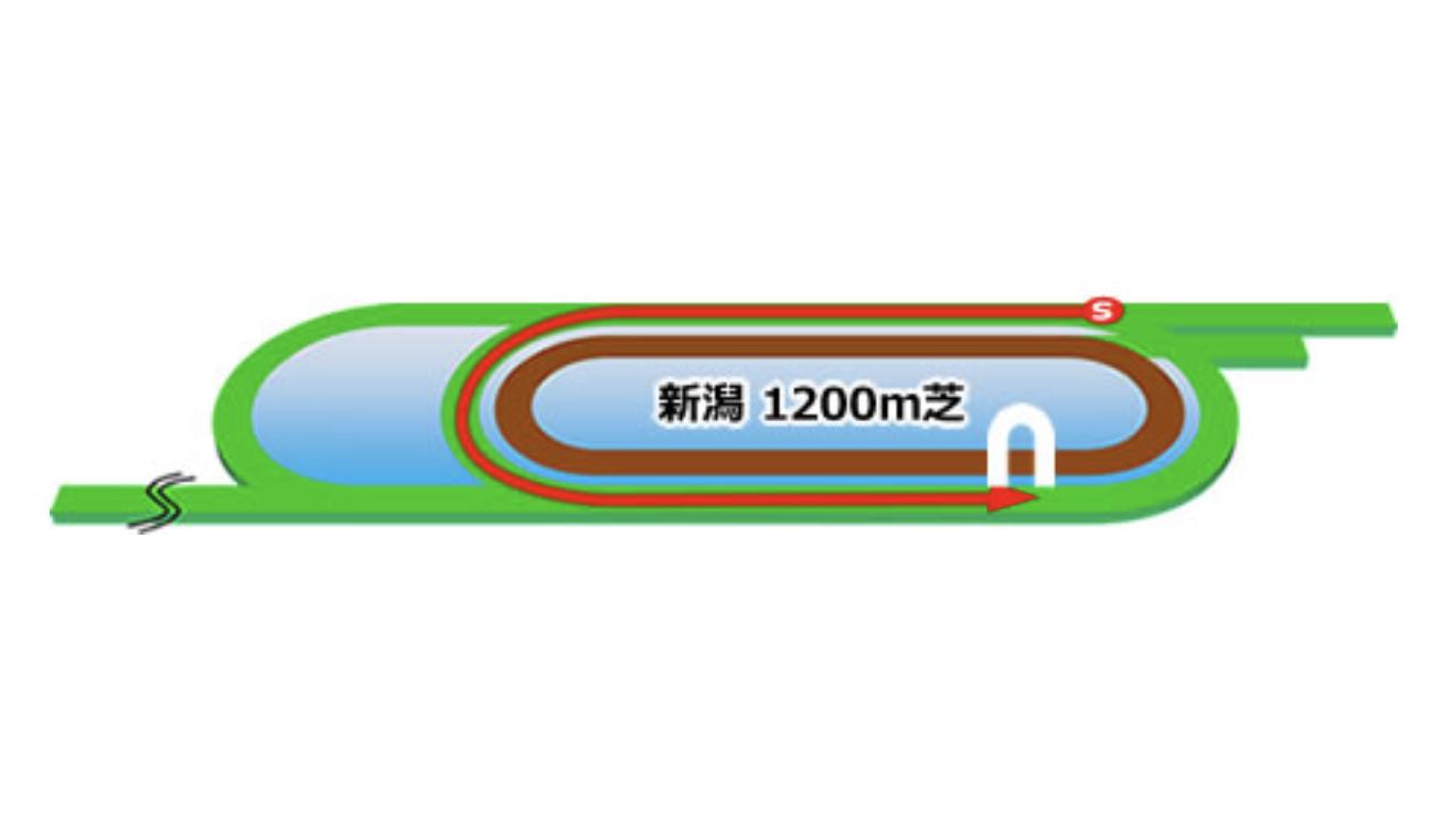 【新潟】芝1200mコースイメージ