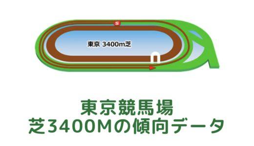 東京芝3400mの傾向データと特徴[2021年版]