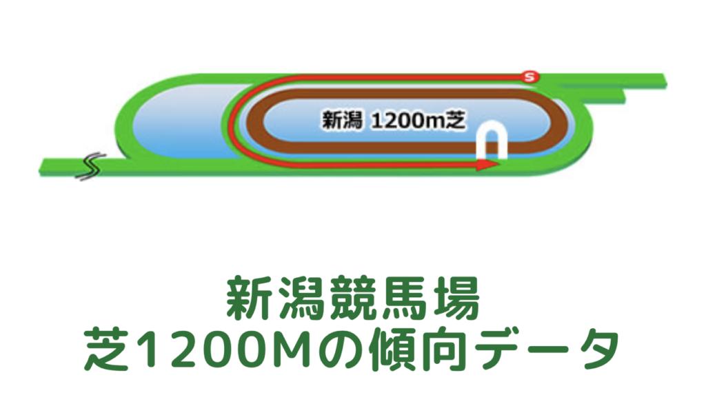 新潟競馬場|芝1200mの傾向データ(血統・枠・騎手・タイム・人気・脚質)