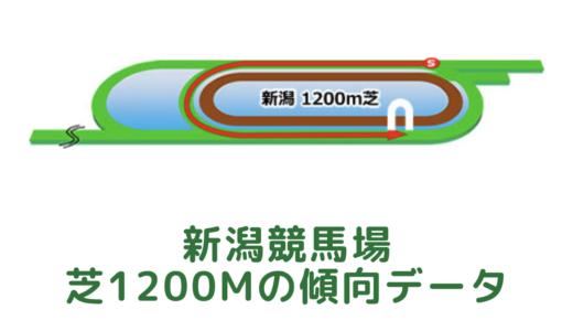 新潟芝1200mの傾向データと特徴[2021年版]