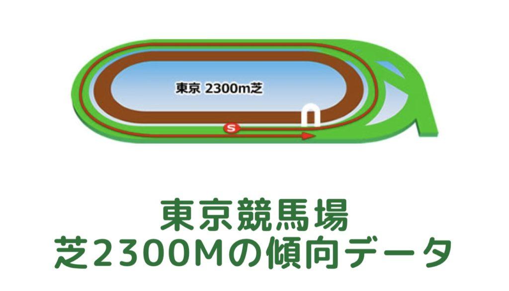 東京競馬場 芝2300mの傾向データ(血統・枠・騎手・タイム・人気・脚質)