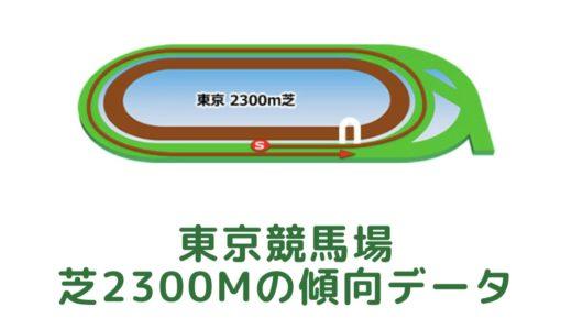 東京芝2300mの傾向データと特徴[2021年版]