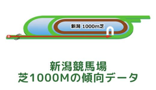 新潟芝1000mの傾向データと特徴[2021年版]